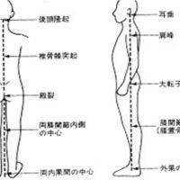 正しい姿勢が腰痛を引き起こす