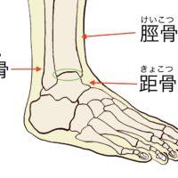 足首を柔らかくする効果的で簡単なストレッチ