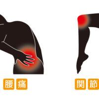 腰痛の原因となる関節の不動とは!?関節の動きに注目してみよう!