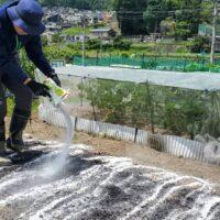 【土づくり】家庭菜園初心者がやる土づくりの手順方法!